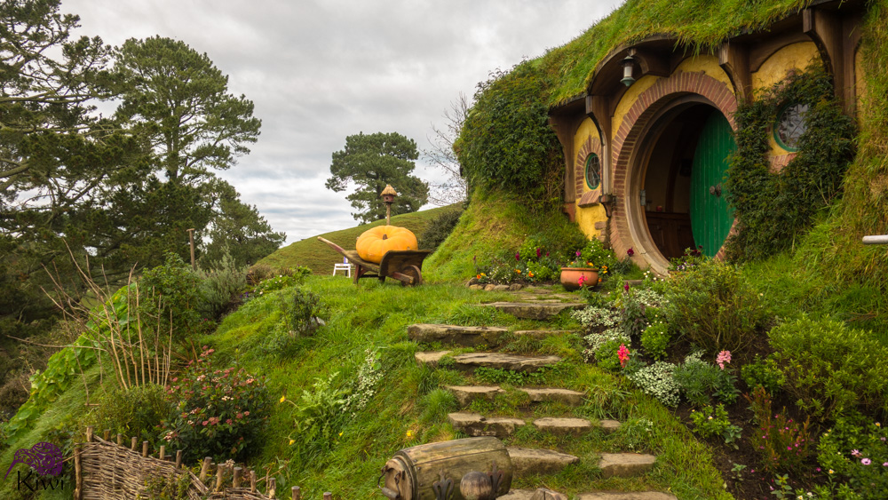 New Zealand – the north island. Welcome to Hobbiton